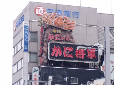 Japanese Giant Building-Eating Crab